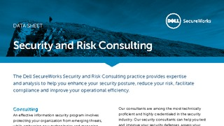 Datasheet security and risk consulting.pdf thumb rect large320x180