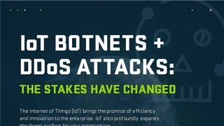 Iot botnets ddos attacks   the stakes have changed.pdf thumb rect large320x180