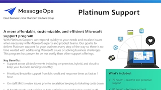 Platinum support brochure.pdf thumb rect large320x180